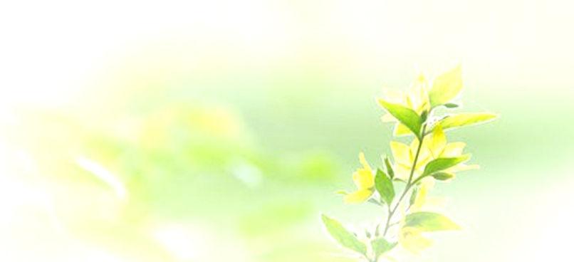 leaf_2_edited.jpg