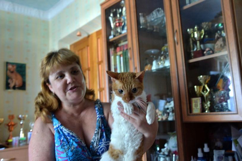 Заводчик Ольга Макарова показывает к