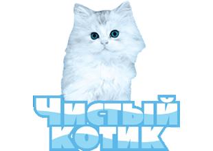 Чистый котик