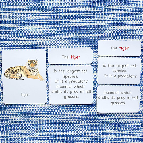 5 PART CARDS: MAMMALS