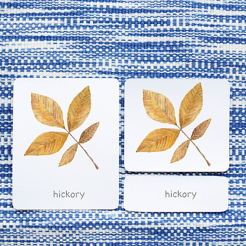 3 PART CARDS: LEAVES