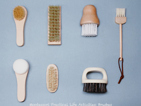 Collection of brushes for practical life activities in Montessori Classroom or at home