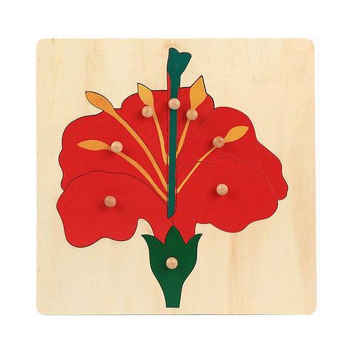 Montessori Flower Puzzle