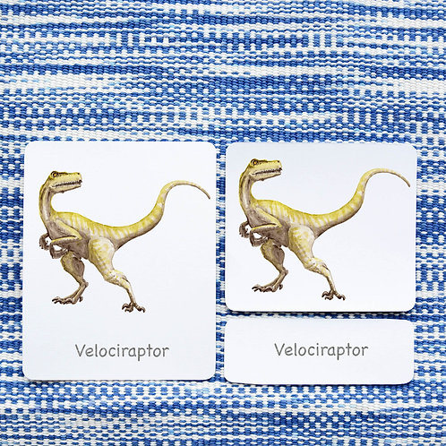 3 PART CARDS: DINOSAURS