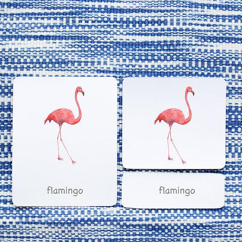 3 PART CARDS: BIRDS