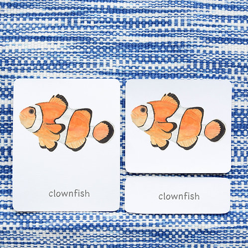 3 PART CARDS: FISH