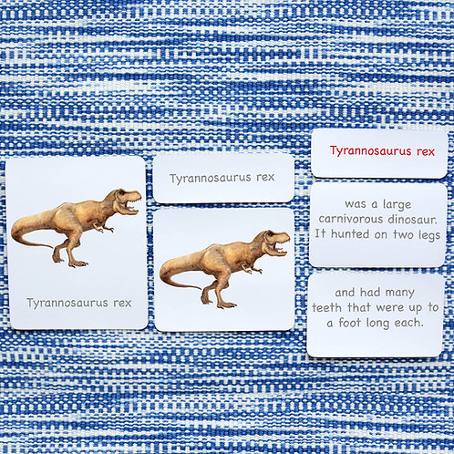 5 PART CARDS: Dinosaurs