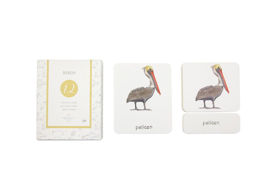 3-partcardsbirdsEN.jpeg