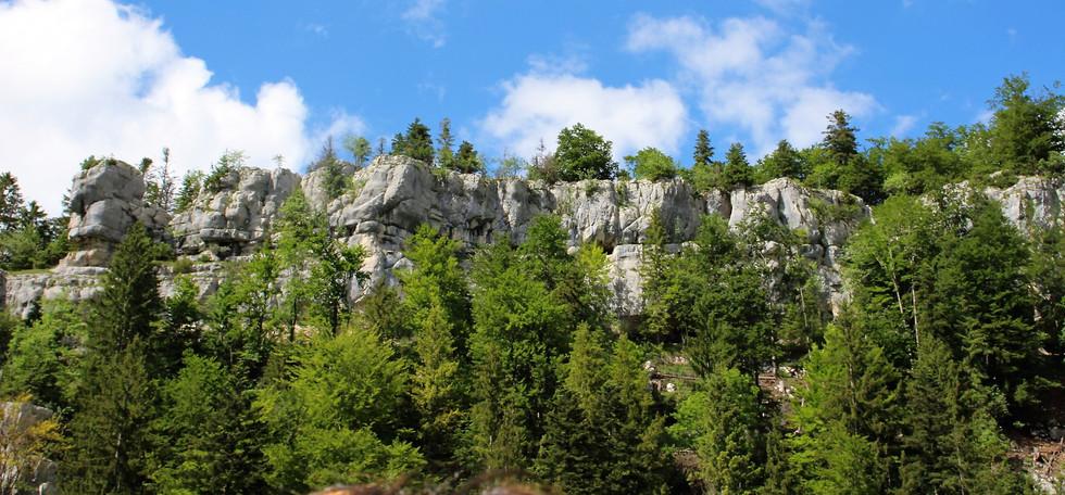 Saur du Doubs - Jura - Hexatrek-Etape1-R