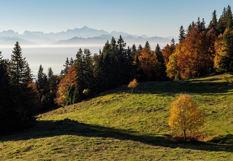 Jura - Vaudois - Hexatrek-Etape1-Randonn