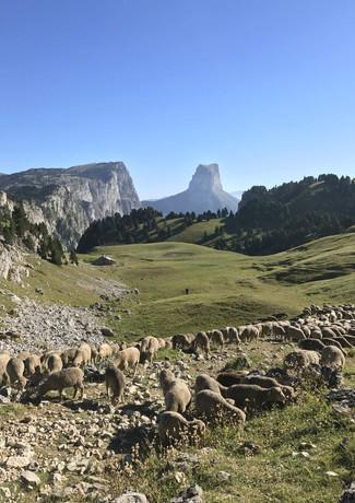 Mont-Aiguille-Vercors-Bivouac-Hexatrek-R