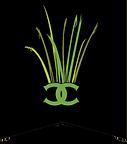 grassesblack.png