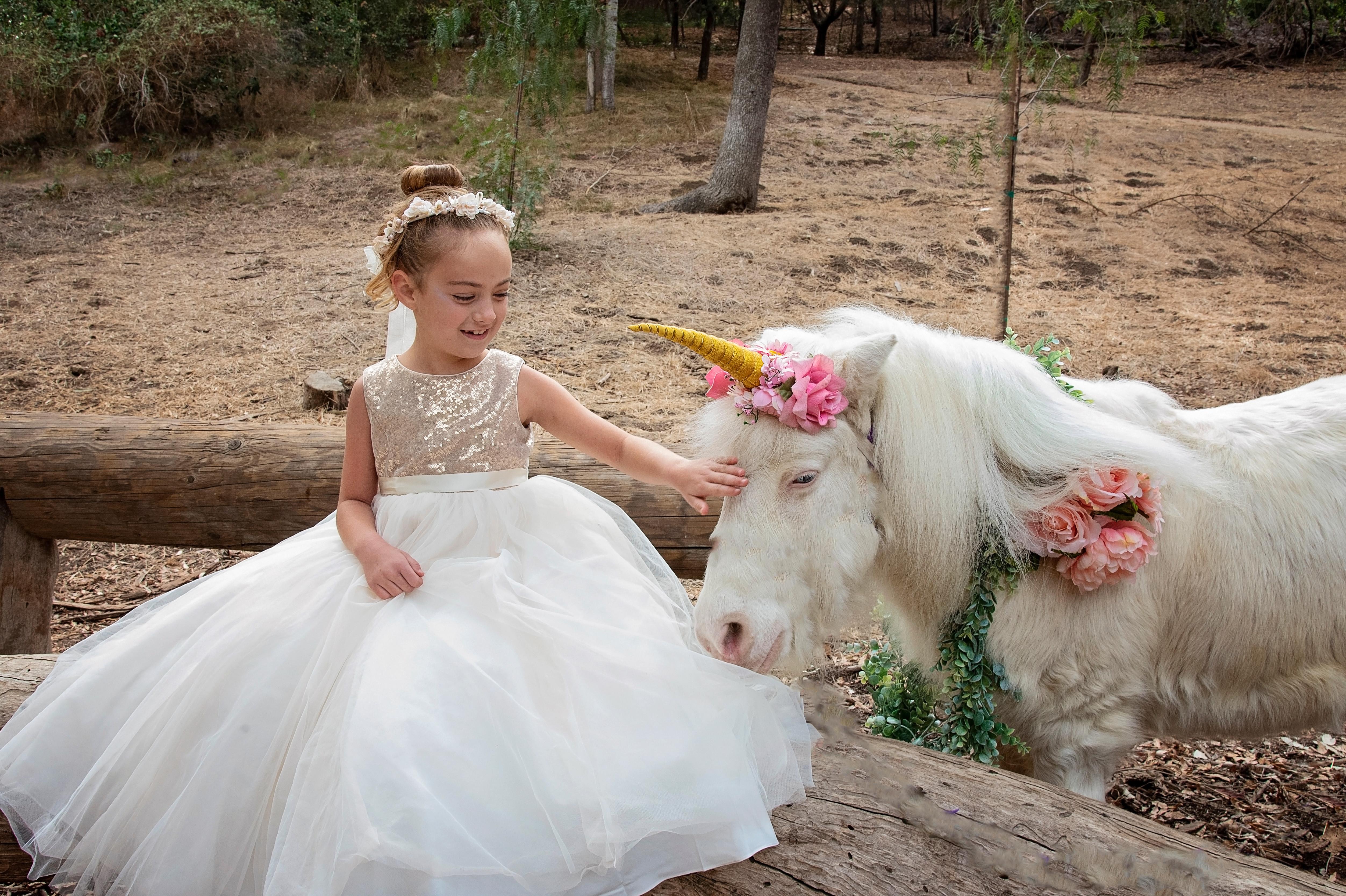 Magical Unicorn Portraits