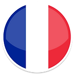 France-icon.png.pagespeed.ce.8bfVNHF1v5.