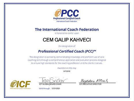 Cem_Galip_KAHVECİ,_PCC.001.jpeg