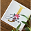 Thumbnail: Personalised Square Floral Coaster