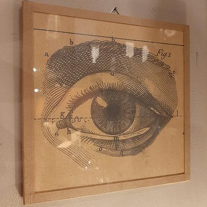 cadre oeil