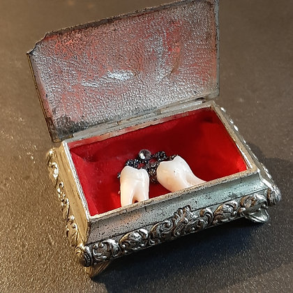 reliquaire dents couronnes canines de curiosités catherine guerre boutique cam le mac