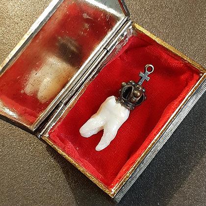 reliquaire cabinet de curiosités dents couronne Catherine Guerre