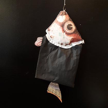 sachet de thé poisson déco murale créateur Mlle Grain de Sel cabinet de curiosités cam le mac