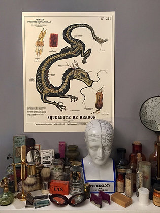 affiche deyrolle par c. renversade