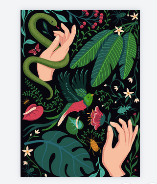 carte jungle 7