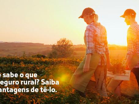 Você sabe o que é o seguro agrícola? E quais as vantagens de tê-lo?