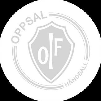 oppsal_edited.png