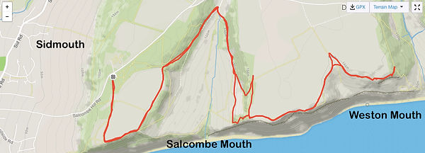 Salcombe Hill Run.jpg