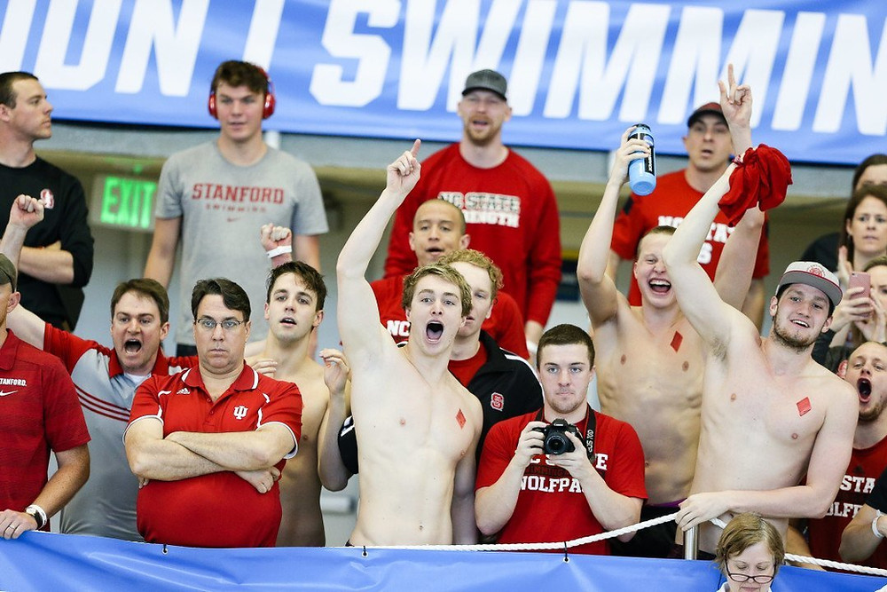 Stock Photo via Tim Binning/TheSwimPictures.com
