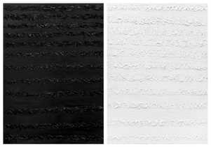 GM272-273 Black&White (140x2)