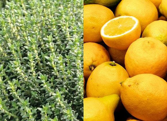 Citron & Thym