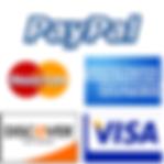 credit_card_logosPaypal.png