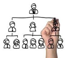 Company Profiling