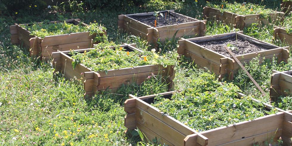 [Reporté] Echange sur le projet de jardin