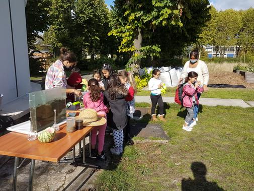 Atelier au jardin pédagogique de la Noue Caillet
