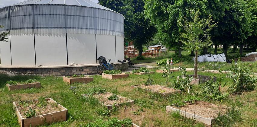 Le jardin pédagogique et la Rotonde