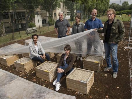 Approfondir les techniques de restauration des sols urbains sur le territoire d'Est Ensemble