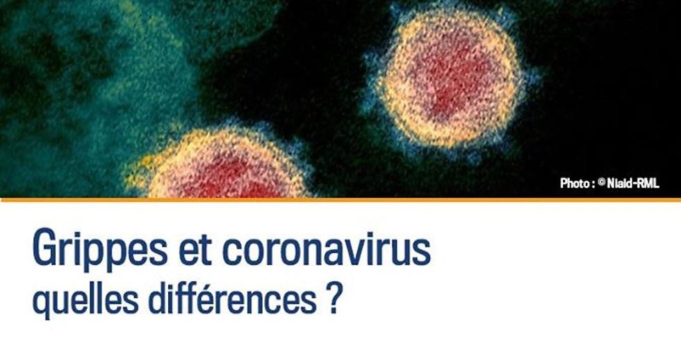 [Evènement annulé] Grippes et coronavirus : quelles différences?