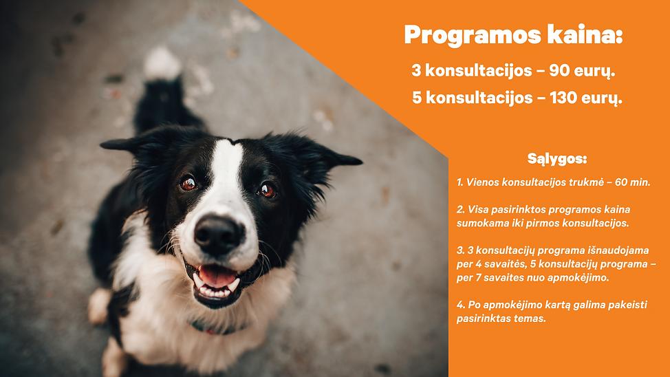 DUK_kainos  (4).png
