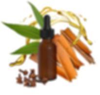 10-ml-illoolaj-Eukaliptusz+Fahej+Szegfus