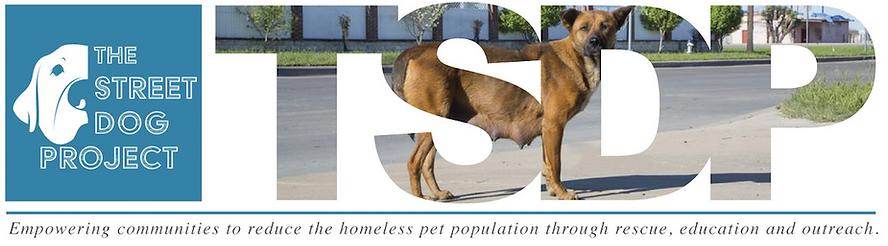 the streetdog project, dallas, animal rescue, dog lovers, anial rights, animal lovers, stree dog