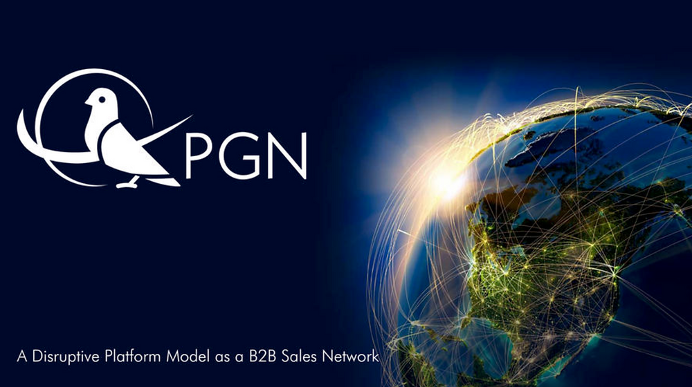 A Disruptive Platform Model as a B2B Sales Network