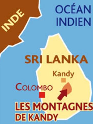 Thé noir Sri Lanka -Ceylan Sylva Kandy FOP -100 gr