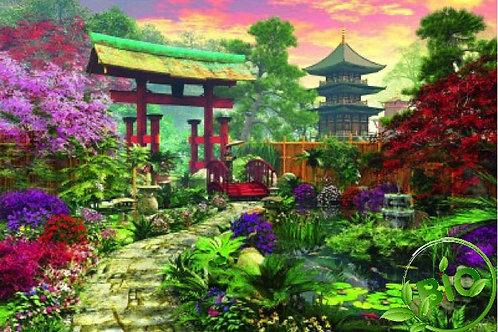 Thé vert - Jardin d'Asie - Sencha bio - 100g