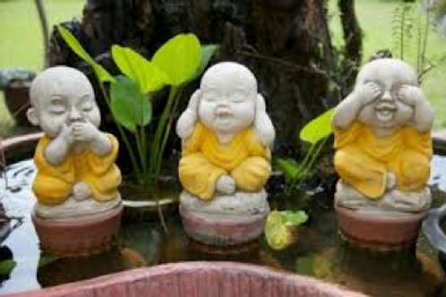 Thé vert - Little Bouddha