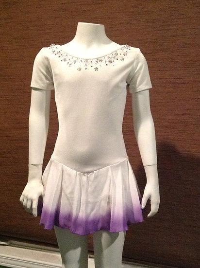 Beaded Velvet Skating Dress with Airbrushed skirt ($177 USD)