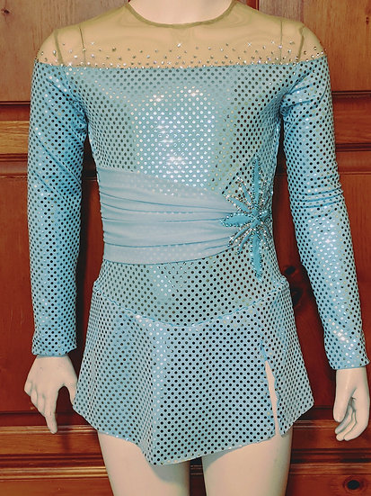 Blue Elsa Skating Dress with Swarovskis ($176 USD)