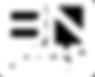 BN Logo 100px.png