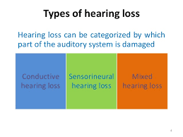 type-of-hearing-loss.png